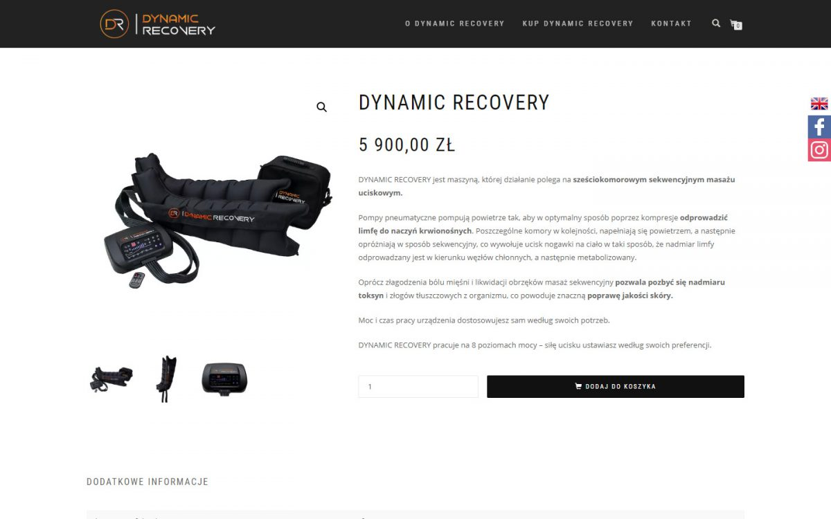 Grafika realizacji - Dynamic Recovery