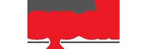 Logo SPDI